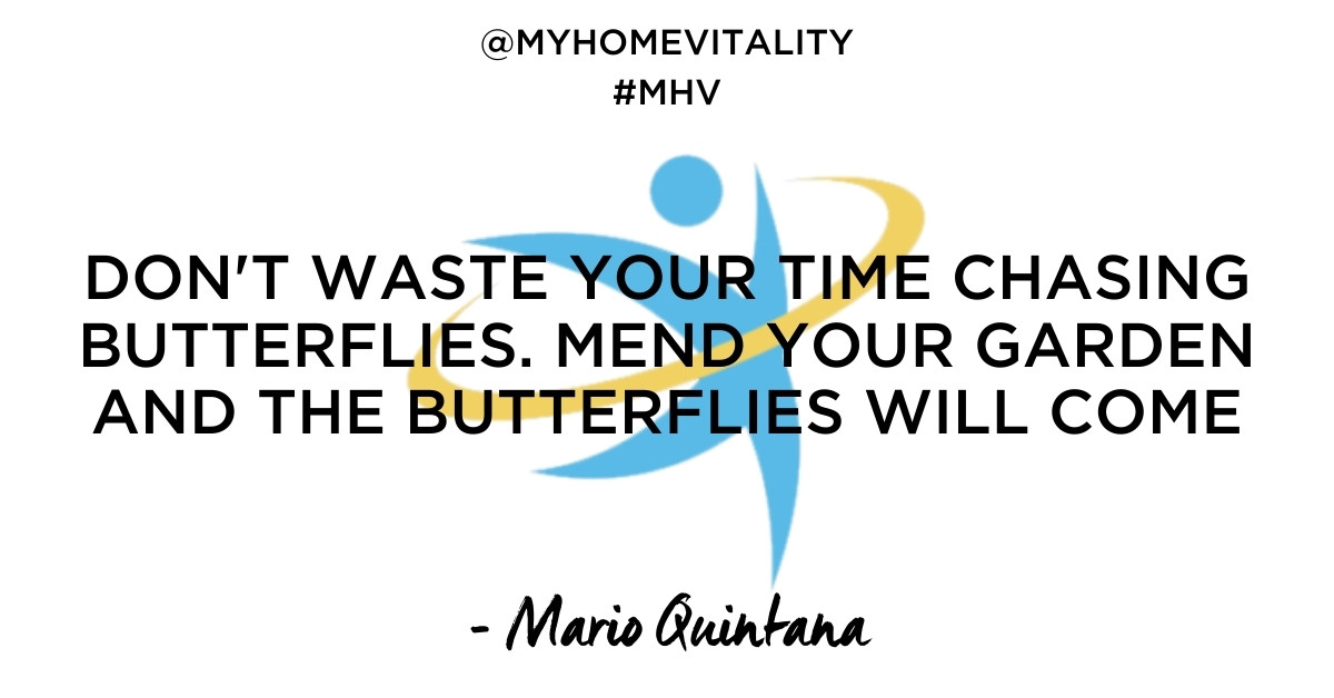 DON'T WASTE YOUR TIME CHASING BUTTERFLIES. MEND YOUR GARDEN AND THE BUTTERFLIES WILL COME | Mario Quintana Quote | My Home Vitality